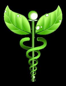 HOLISTIC-HEALTH-232x300