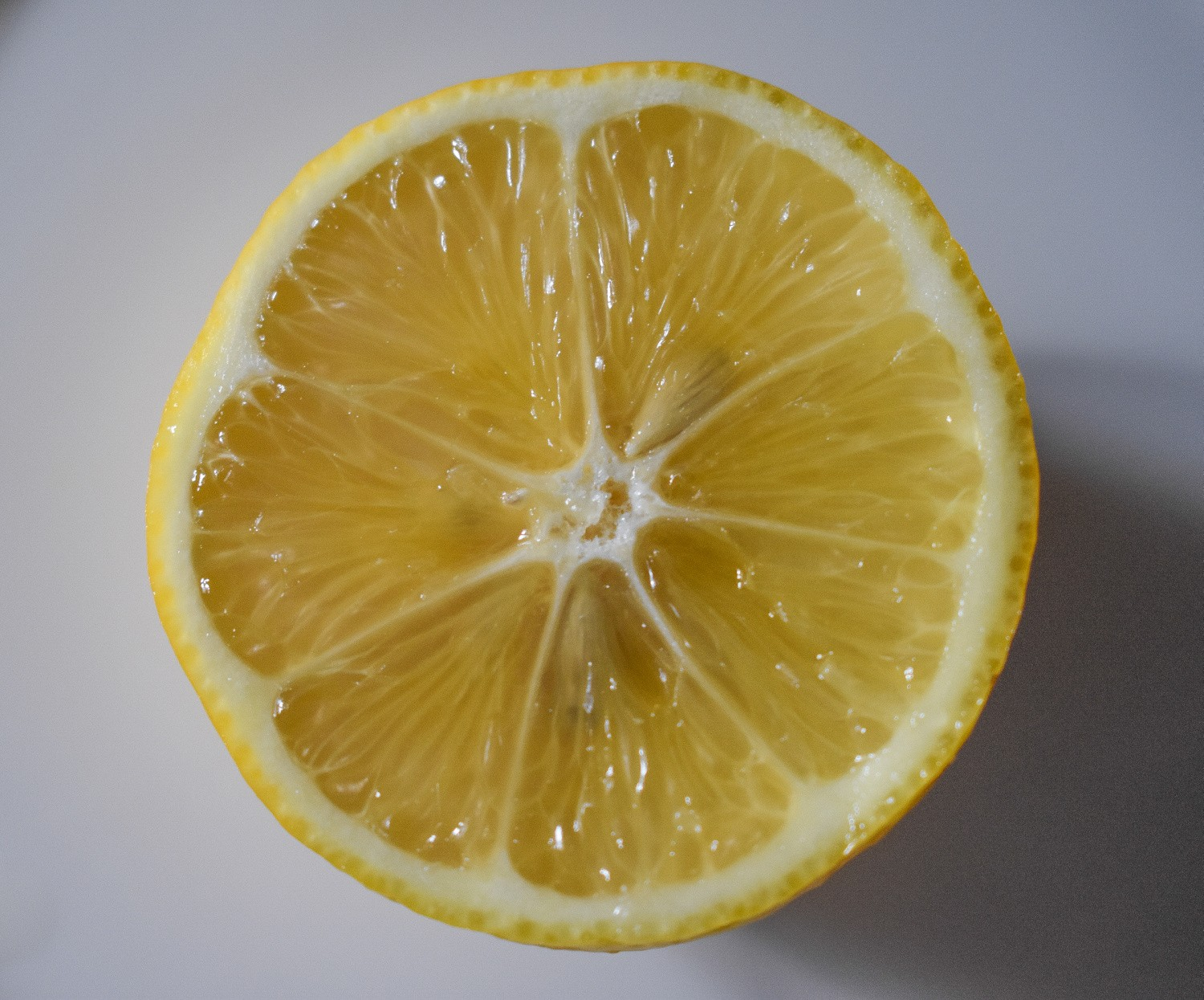 sliced_lemon_on_white_surface-scopio-62775def-c589-4cf1-ab1a-d8b24f9ab5a9